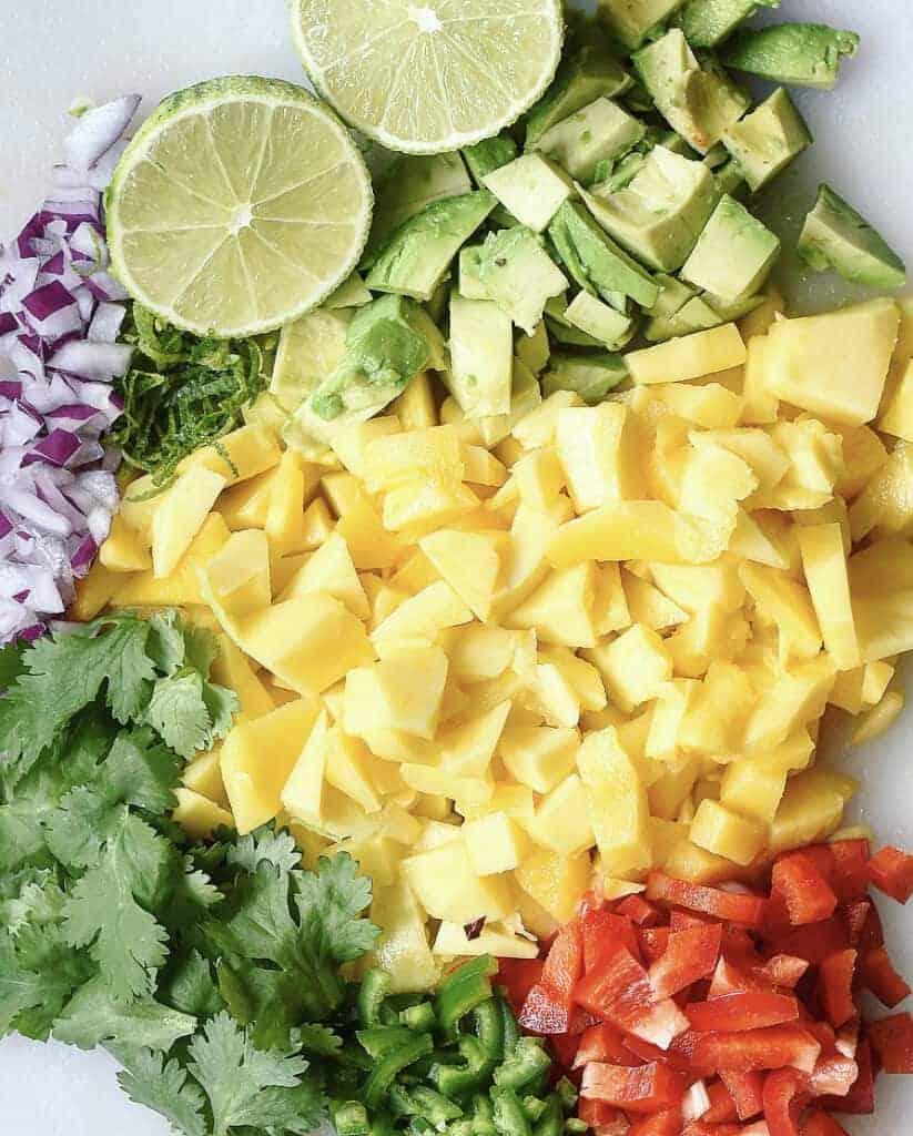 Vegan Jamaican Jerk Jackfruit with Fresh Mango Salsa