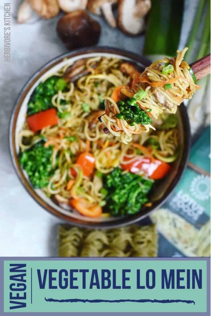 Vegetable Lo Mein The Ultimate in Vegan Chinese Food