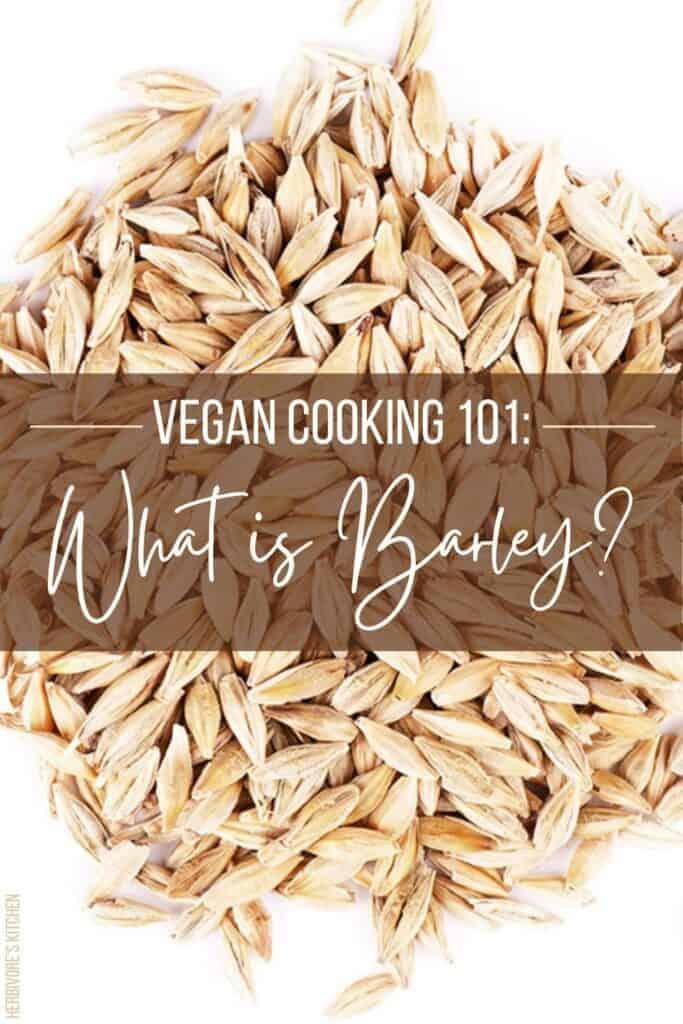 Vegan Cooking 101 What Is Barley?