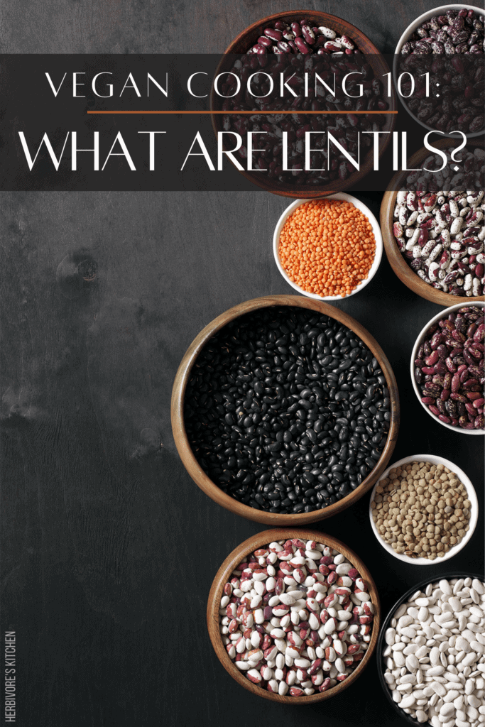 Vegan Cooking 101 How to Cook Lentils: Protein for Vegans