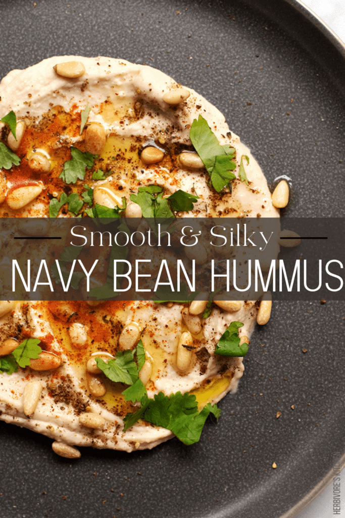 Navy Bean Hummus: Don't Miss Out on White Bean Hummus -- One of the Best Alternative Hummus Recipes!